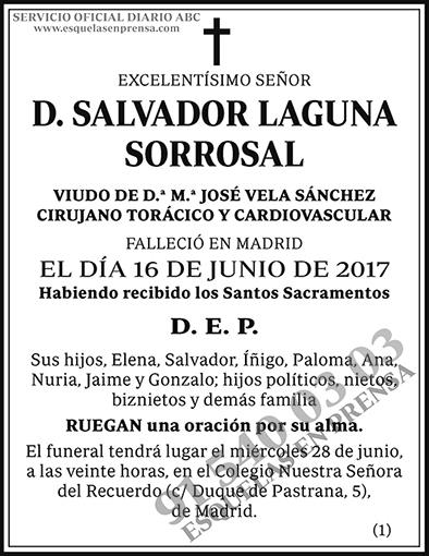 Salvador Laguna Sorrosal